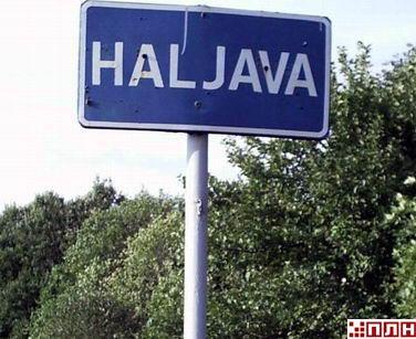 halyava