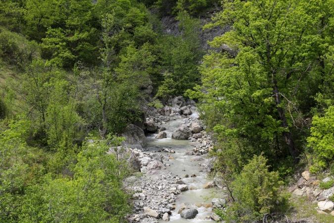 Река Чено